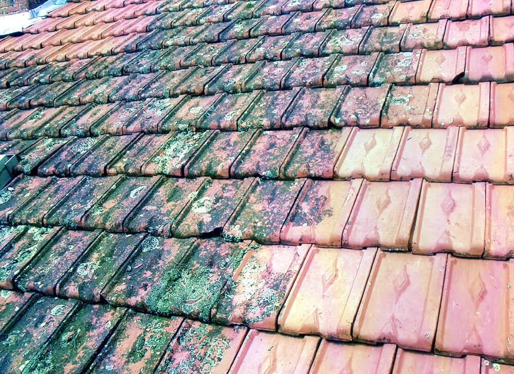 Rénovation d'une toiture avec démoussage à Aix-les-Bains (Savoie 73)